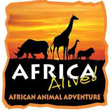 AFRICA ALIVE! EDUCATION - Show Us Your Shells! Image