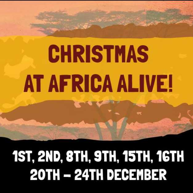 Christmas At Africa Alive  Image 2